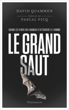 Le grand saut - Couverture